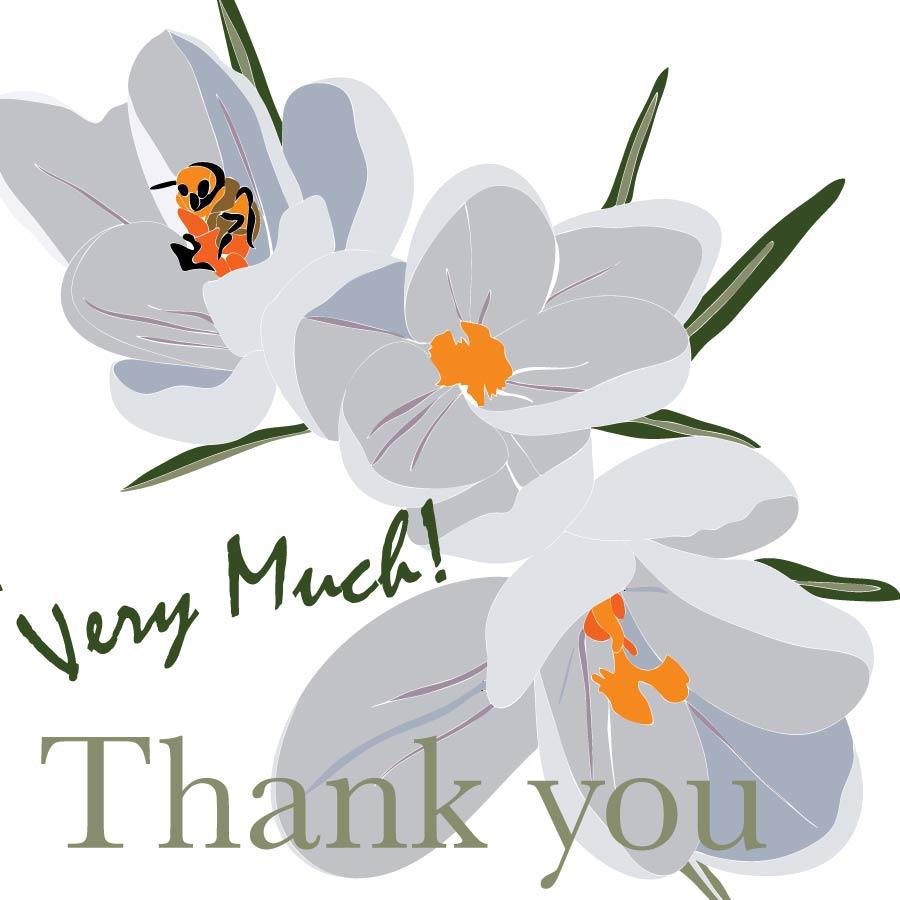 white crocus - thank you